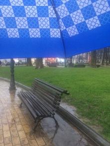 Views from my umbrella ☔️