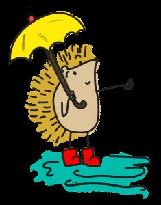 sssumbrella